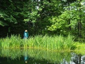 pond 03